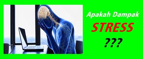 Dampak Stres bagi kesehatan